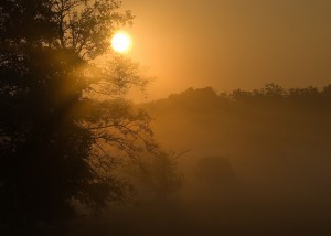 ködös nap