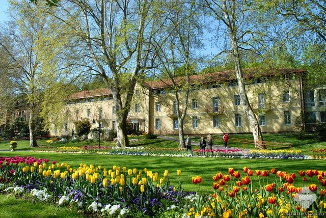 Szent András Reumakórház