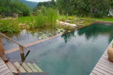 Kerti medencék: 7 meglepő ötlet