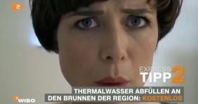 Hévízi gyógyvizet ivott a ZDF német műsorvezetője