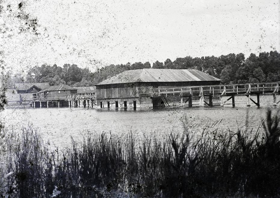 Hévíz Tófürdő 1908
