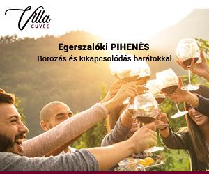 Villa cuvée Egerszaloki szálláshely